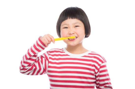 ホワイトニング歯磨き粉で白い歯に【パパイン成分配合のキシリホワイト】